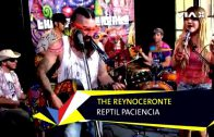 "The Reynoceronte – ""Reptil paciencia"" en Moov // VIA X"